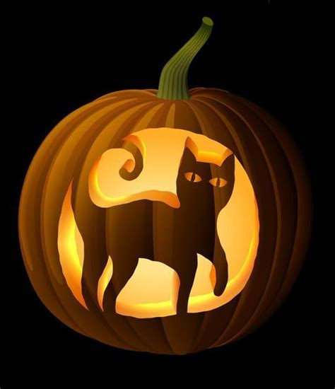cat pumpkin template 17 of 2017 s best cat pumpkin carving ideas on