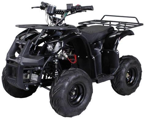 actionbikes motors quad   farmer fuer kinder ab