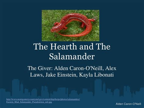 theme of fahrenheit 451 the hearth and the salamander the hearth and the salamander