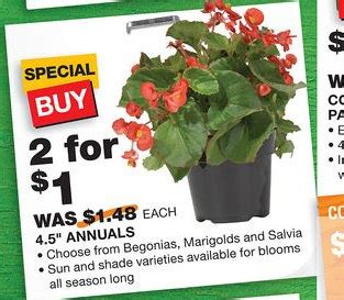 awesome deals at home depot annuals and veggie plants