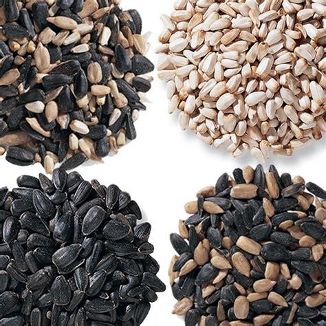 black sunflower seeds for humans copy of deck