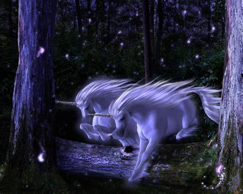black unicorn hd wallpaper unicorns images unicorn wallpaper hd wallpaper and
