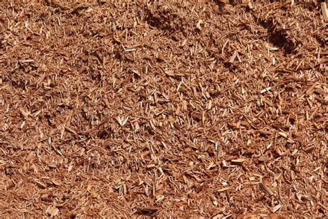 cedar mulch vegetable garden sand soils screenings mulch