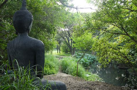 Best Detox Retreats In India by 10 Tranquil And Meditation Retreats In India For