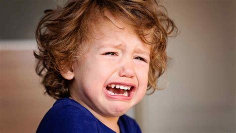imagenes de niños llorando animadas 191 qu 233 hay detr 225 s de los berrinches en los ni 241 os telemundo