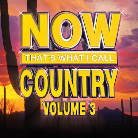 S A Volume 9 now that s what i call country vol 3 walmart