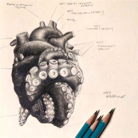 tentacle tattoo 25 best ideas about on kraken