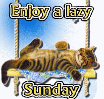 A Cat On A Sunday by Lazy Sunday Cat Gif Lazy Sunday Cat Gifs Lazy Sunday Cat