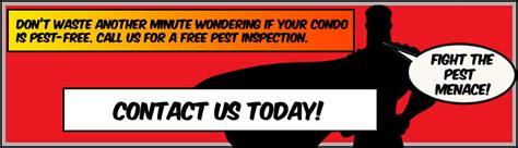 condo pest control pestmax pest control blog