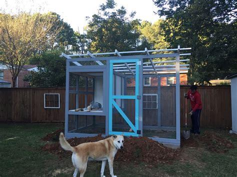 atlanta backyard chickens atlanta georgia urban chicken coop backyard chickens