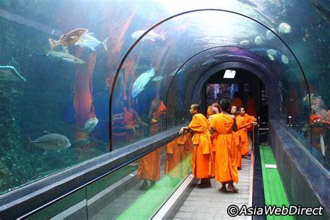 phuket aquarium phuket attractions