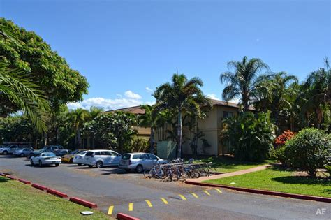 Hawaii Appartments by Paradise Gardens Apartments Kihei Hi Apartment Finder