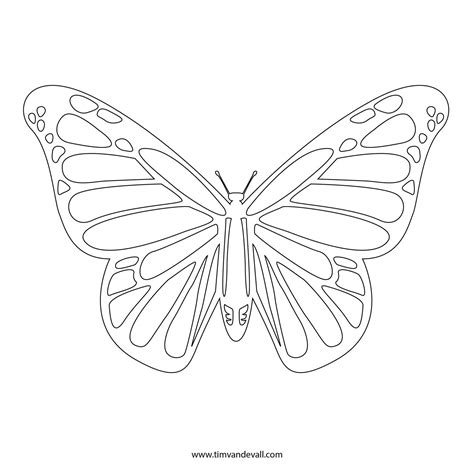 free butterfly card template monarch butterfly stencil printable graffics and designs