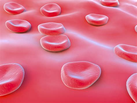 Stool Blood Causes by Is It Normal To Blood In Your Stool Answers On