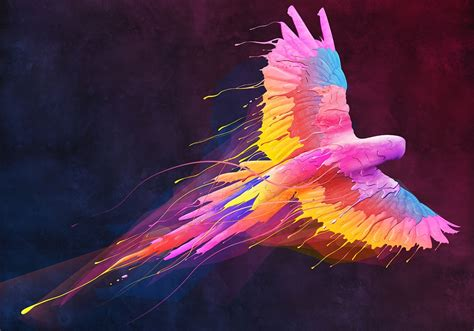 painting colour flying colors pictures