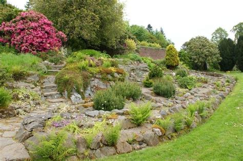 costruire giardino roccioso come costruire un giardino roccioso giardini orientali