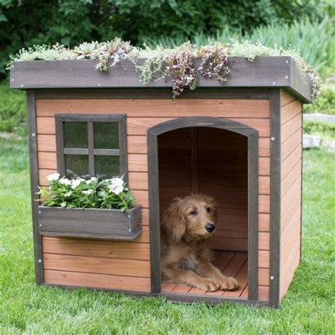 dog house windows raised bed garden dog house with window box officialdoghouse