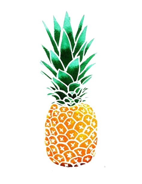 transparent pineapple