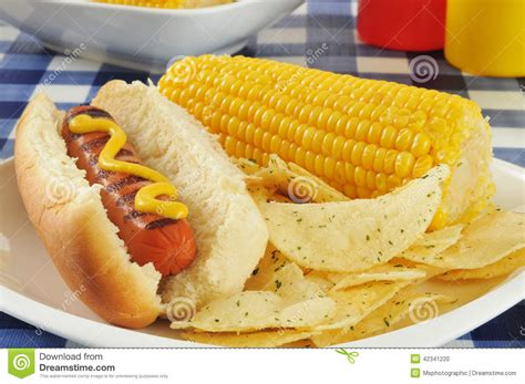 dogs corn on the cob with corn on the cob stock photo image 42341220