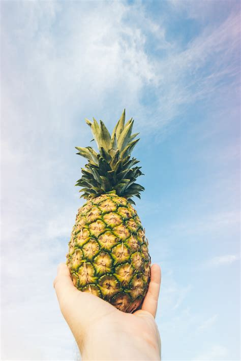 pineapple fruit  gray table  stock photo