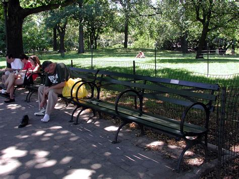 buy a bench in central park david meyerson
