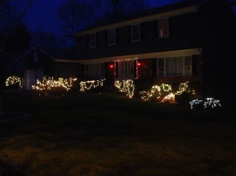 bushes christmas lights images