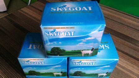 Kambing Murni Energoat distributor kambing etawa skygoat murah medan kami