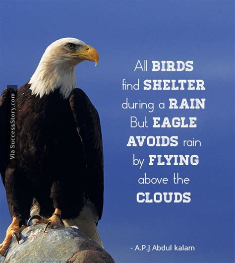 eagle biography in hindi 16 most popular inspirational quotes from a p j abdul
