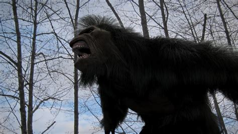 the of bigfoot the cinema file 78 quot bigfoot quot review
