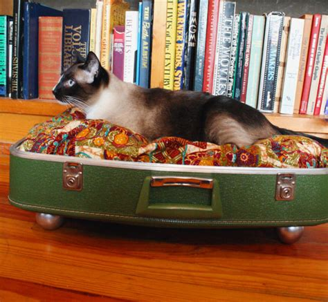 upcycled cat bed snuggyluggage suitcase pet bed vintage upcycled cat olive