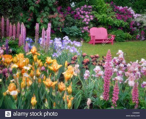 iris flower garden garden chair and flower garden schrieners iris gardens