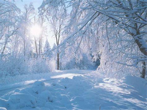 beautiful winter beautiful nature winter wallpaper wallpaper express is