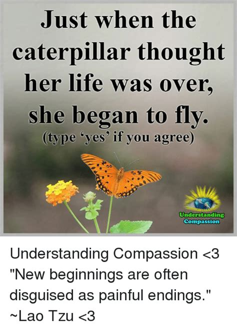 Just When You Thought New On The Block Were by Just When The Caterpillar Thought Was She