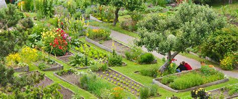 mendocino organic gardens big river nurseries stanford