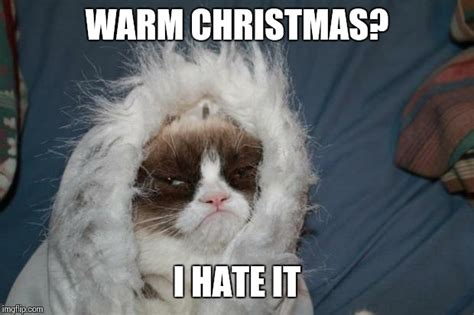I Hate Christmas Meme - cold grumpy cat imgflip