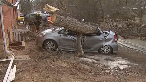 car with tree image strong wind leaves tens of thousands without power 171 cbs denver