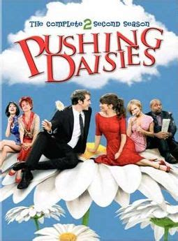 the complete chi s sweet home 4 pushing daisies complete 2nd season 4 dvd 2009