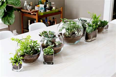 terrarium table terrarium planter table runner a beautiful mess