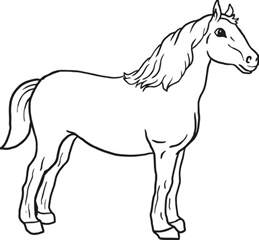 pictures of horses to color printable coloring pages coloring me