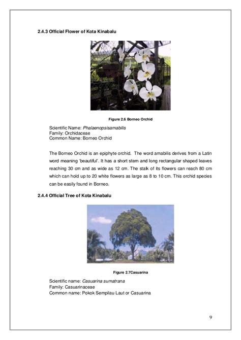 Help Me Write Report by Help Me Write Botany Report