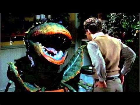 Feed Me Seymour Meme - the little shop of horrors 1986 feed me seymour git