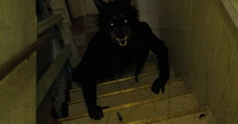 horror creatures in basement creepy wolf crawling up the stairs mask