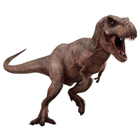 pictures with no background t rex dinosaur transparent background image