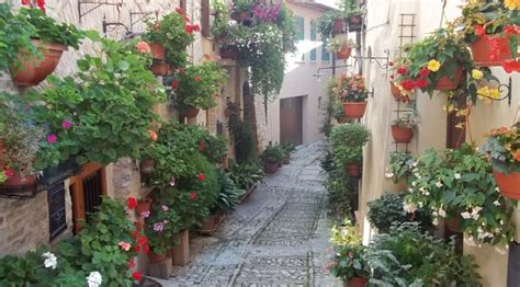 piccoli giardini fioriti giardini fioriti stunning accolgo la tua richiesta di