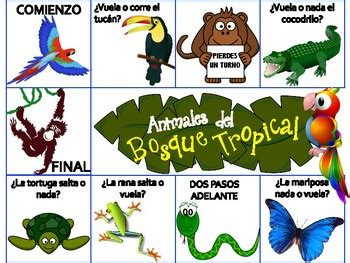 animals   rainforest spanish board game animal fact