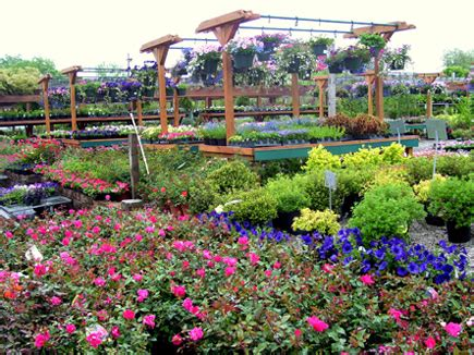 Garden Stores 17 Best 1000 Ideas About Garden Centre On House