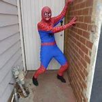 Image result for Spiderman Costumes