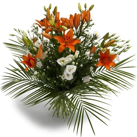 Blumen Pflanzen 3070 by Tropez Tropez Bestellen Und Liefern 252 Ber