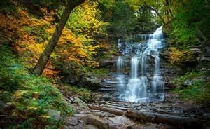Nature Scene Wall Murals waterfall cascade river forest autumn stones pennsylvania