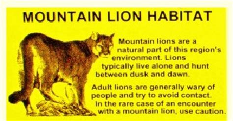 mountain lion habitat – rotwnews.com